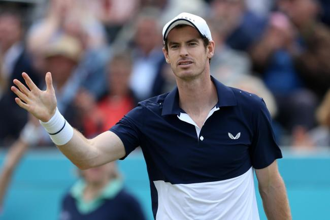 Andy Murray is back in action