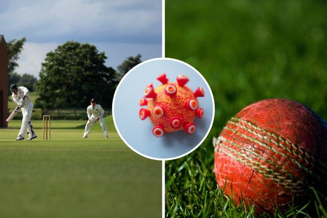 The English Cricket Board has released guidance for competetive cricket after the government announced the sport could return on July 11. Photos: Canva