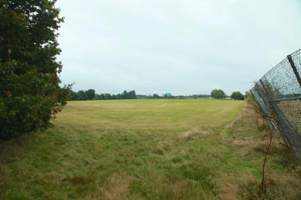 Warren Farm playing fields could become Ealing Wood,says the author