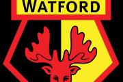 Bees defender pushing for a recall against Watford