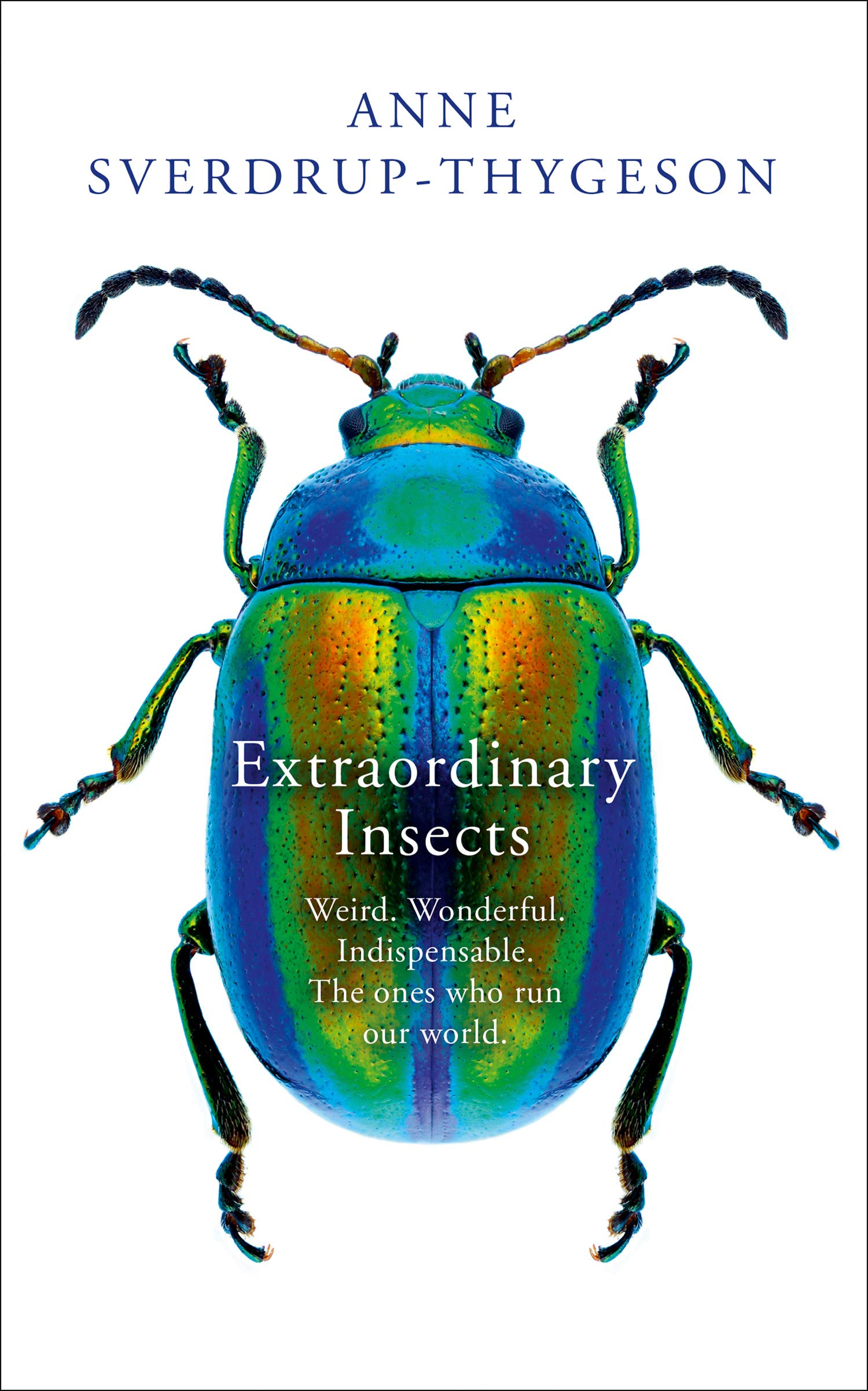Extraordinary Insects with Professor Anne Sverdrup-Thygeson